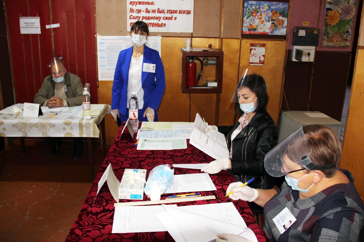 На Дону за 2,5 часа дистанционно проголосовали более 10 тысяч избирателей